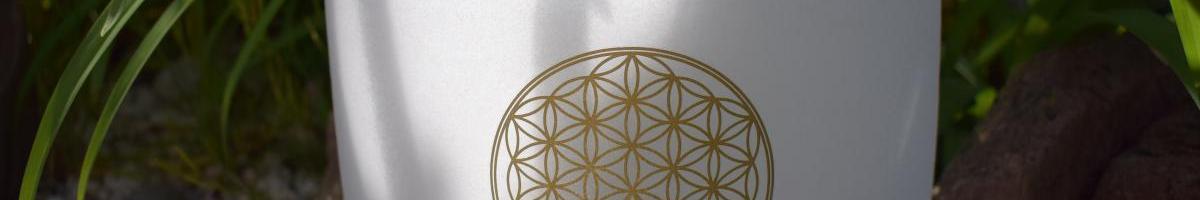 Bol en cristal de Quartz fleur de vie